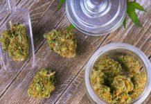arkansas-medical-marijuana-commission-approves-32-dispensaries-featured