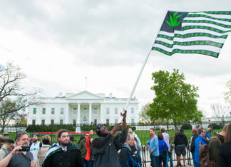 could-there-soon-legal-recreational-weed-sales-washington-dc