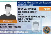 Florida Medical Marijuana card | HIGHLIFE