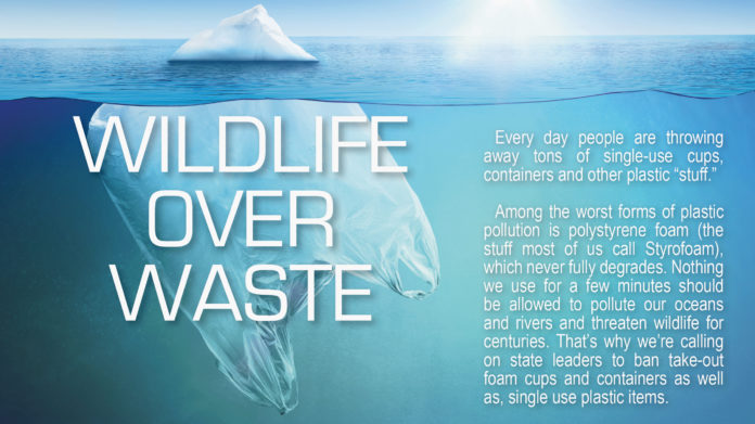 HIGHLIFE Wildlife Over Waste