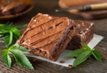 HIGHLIFE Full Spectrum Marijuana Brownie