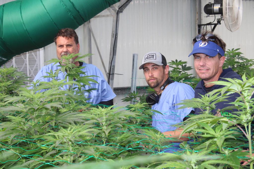 HIGHLIFE Magazine One Plant Team 2