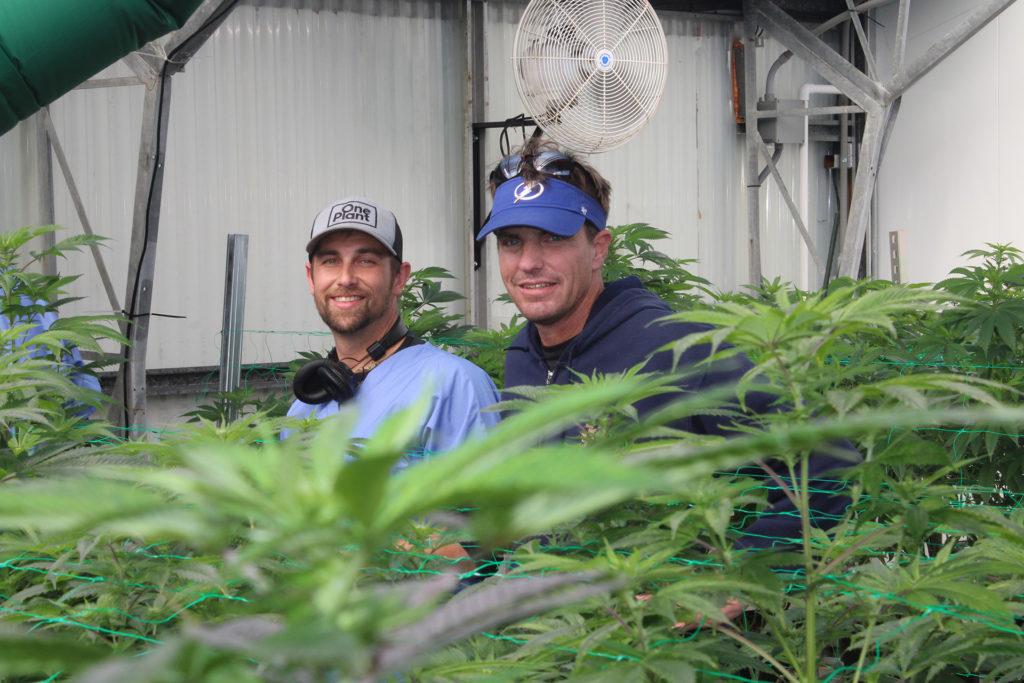 HIGHLIFE Magazine One Plant Team 3