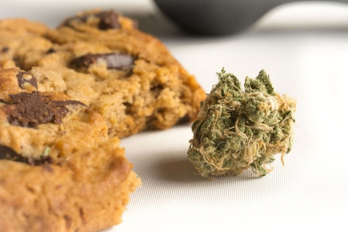 HIGHLIFE Marijuana Edibles - Chocolate Chip Cookie