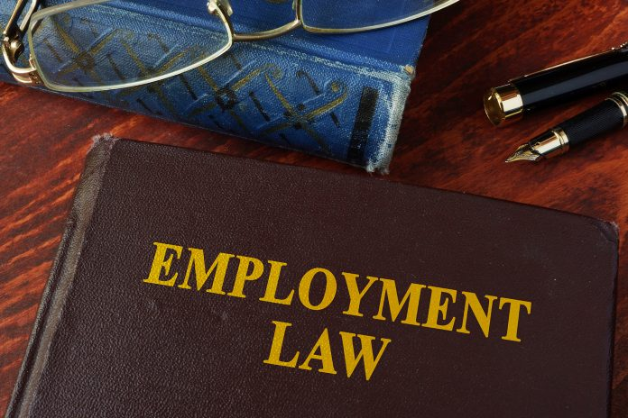 Michael Minardi | Employment Law